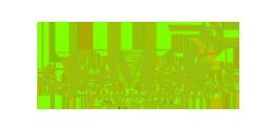 Lo Molí Logo